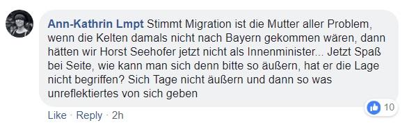 FB-Kommentar3